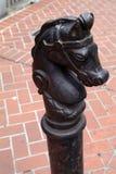 Caballo de hierro Imágenes de archivo libres de regalías