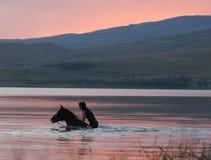 Caballo de la castaña y la muchacha en el agua Fotografía de archivo