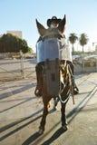 Caballo de la policía de servicio Foto de archivo libre de regalías