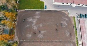 Caballo de la visión aérea en granja metrajes