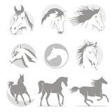 Caballo de los logotipos stock de ilustración