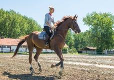 Caballo de montar a caballo Fotos de archivo