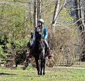 Caballo de montar a caballo adolescente de la muchacha Foto de archivo libre de regalías