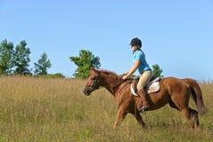 Caballo de montar a caballo de la muchacha Foto de archivo libre de regalías