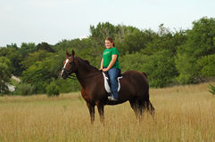 Caballo de montar a caballo de la muchacha en campo Fotografía de archivo
