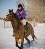 Caballo de montar a caballo de la mujer joven en invierno Imagen de archivo libre de regalías