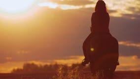 Caballo de montar a caballo de la mujer joven en puesta del sol brillante