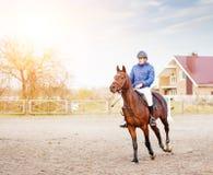 Caballo de montar a caballo del deportista en la competencia ecuestre Foto de archivo libre de regalías
