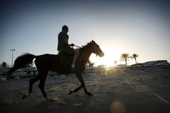 Caballo de montar a caballo del hombre en la playa Fotos de archivo