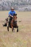 Caballo de montar a caballo del hombre a la velocidad Foto de archivo libre de regalías