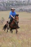 Caballo de montar a caballo del hombre a la velocidad Imagenes de archivo