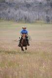 Caballo de montar a caballo del hombre a la velocidad Imagen de archivo libre de regalías