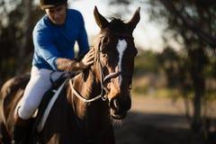 Caballo de montar a caballo del jinete en el granero Foto de archivo libre de regalías