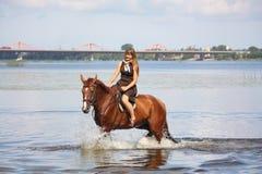 Caballo de montar a caballo hermoso del adolescente en el río Fotografía de archivo libre de regalías