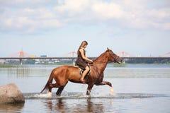 Caballo de montar a caballo hermoso del adolescente en el río Imágenes de archivo libres de regalías