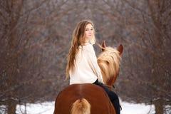 Caballo de montar a caballo lindo de la muchacha que mira detrás sobre hombro Fotos de archivo
