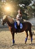 Caballo de montar a caballo moreno bonito joven al aire libre foto de archivo