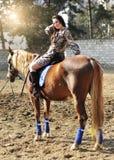 Caballo de montar a caballo moreno bonito joven al aire libre imagen de archivo
