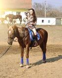 Caballo de montar a caballo moreno bonito joven al aire libre imágenes de archivo libres de regalías