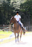 Caballo de montar a caballo negro del adolescente Foto de archivo