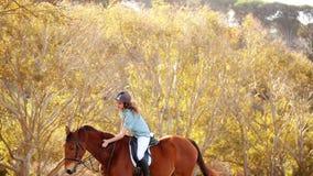 Caballo de montar a caballo sonriente bonito de la mujer almacen de metraje de vídeo