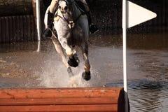 Caballo de montar a caballo a través del agua Fotos de archivo
