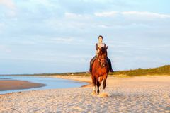 Caballo de montar a caballo del adolescente en la playa en la puesta del sol outdoors Fotos de archivo libres de regalías