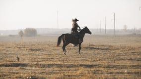 Caballo de montar a caballo hermoso de la mujer con el perro en el campo de la salida del sol Vaquera joven en el caballo almacen de metraje de vídeo