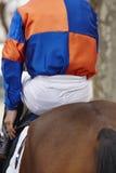 Caballo de raza con el jinete listo para correr Área del prado Fotografía de archivo