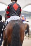 Caballo de raza con el jinete listo para correr Área del prado Imagenes de archivo