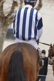 Caballo de raza con el jinete listo para correr Área del prado Imagen de archivo libre de regalías