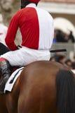 Caballo de raza con el jinete listo para correr Área del prado Foto de archivo