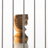 Caballo del ajedrez quilty Imágenes de archivo libres de regalías