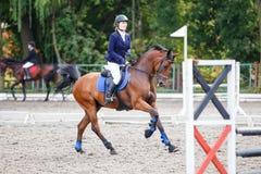 Caballo del alazán del montar a caballo de la chica joven en el salto de la demostración Imagen de archivo libre de regalías