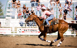 Caballo del Cowgirl Fotografía de archivo