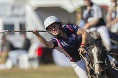 Caballo del jugador de la Polo-cruz Foto de archivo
