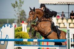 Caballo ecuestre Rider Jumping Represente mostrar a un competidor que se realiza en la competencia de salto de demostración Imagenes de archivo