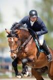 Caballo ecuestre Rider Jumping Represente mostrar a un competidor que se realiza en la competencia de salto de demostración fotografía de archivo libre de regalías