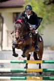 Caballo ecuestre Rider Jumping Represente mostrar a un competidor que se realiza en la competencia de salto de demostración imagen de archivo