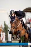 Caballo ecuestre Rider Jumping Represente mostrar a un competidor que se realiza en la competencia de salto de demostración foto de archivo libre de regalías