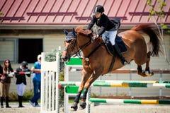 Caballo ecuestre Rider Jumping Represente mostrar a una muchacha que se realiza en la competencia de salto de demostración fotografía de archivo libre de regalías