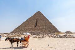 Caballo en arnés y pirámide foto de archivo
