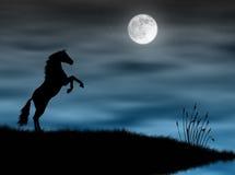 Caballo en el claro de luna stock de ilustración