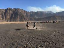 Caballo en el volcán Imagen de archivo libre de regalías