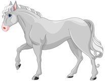 Caballo gris libre illustration