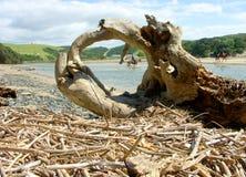 Caballo-jinete capítulo en escena del río Foto de archivo
