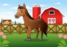 Caballo marrón de la historieta en la granja Foto de archivo libre de regalías