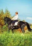 Caballo negro de la doma con el jinete en campo del otoño Foto de archivo libre de regalías
