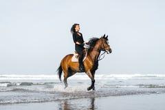 caballo que monta ecuestre femenino joven en agua ondulada fotografía de archivo libre de regalías