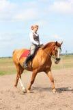 Caballo rubio joven hermoso de la castaña del montar a caballo de la mujer Imagen de archivo libre de regalías
